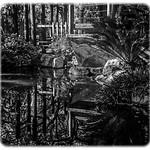 Descanso Gardens, Image #4