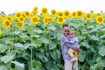 SuzysSnapshots_Sunflowers_Brittany-6133