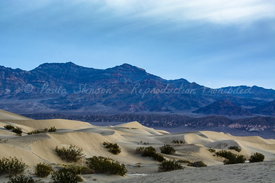 Mesquite Flat and Mountain Range