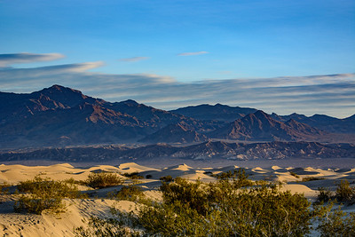 Morning light at Mesquite Flats