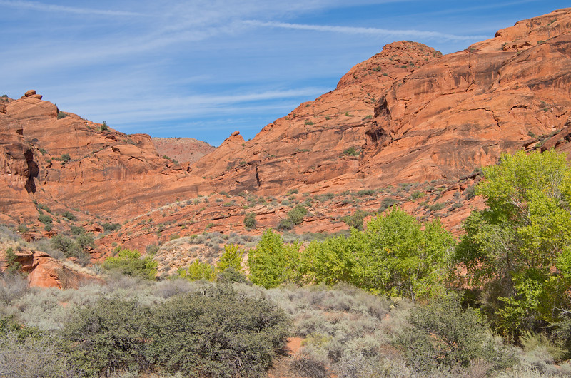 Times up! We swung into Red Cliffs Recreation area near Leeds for a morning walk, before hitting the highway for the long drive home.