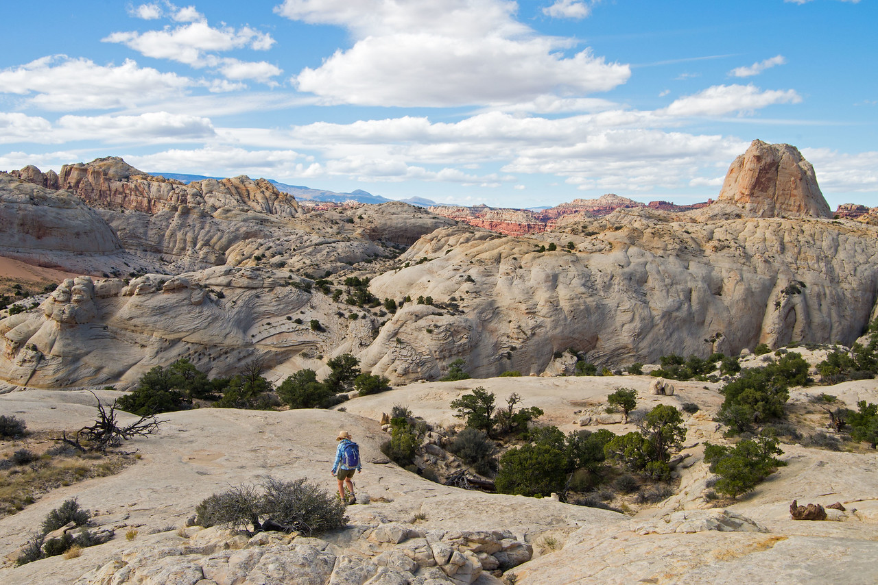 Easy travel on sandstone benches before the return to the valley below, and then out on the Navaho Knobs trail.
