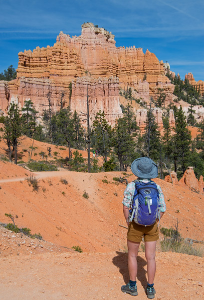 Next stop was the Fairyland Loop at Bryce- an old favourite, and free!