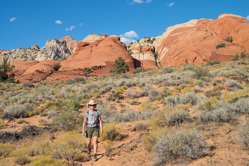 Next stop- Snow Canyon State Park near St. George.