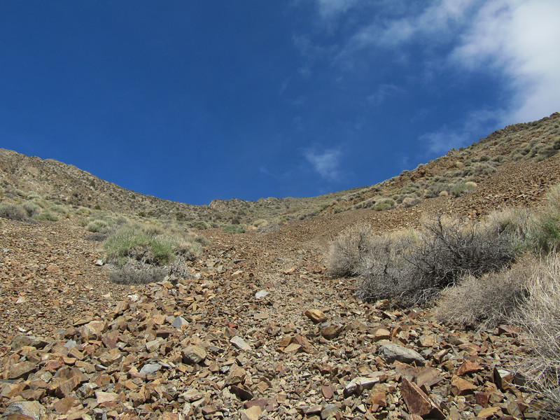 I forgot to take a picture at the top of the scree bomb, this is looking up it; best part is out of view and higher up