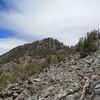 Mount Inyo!