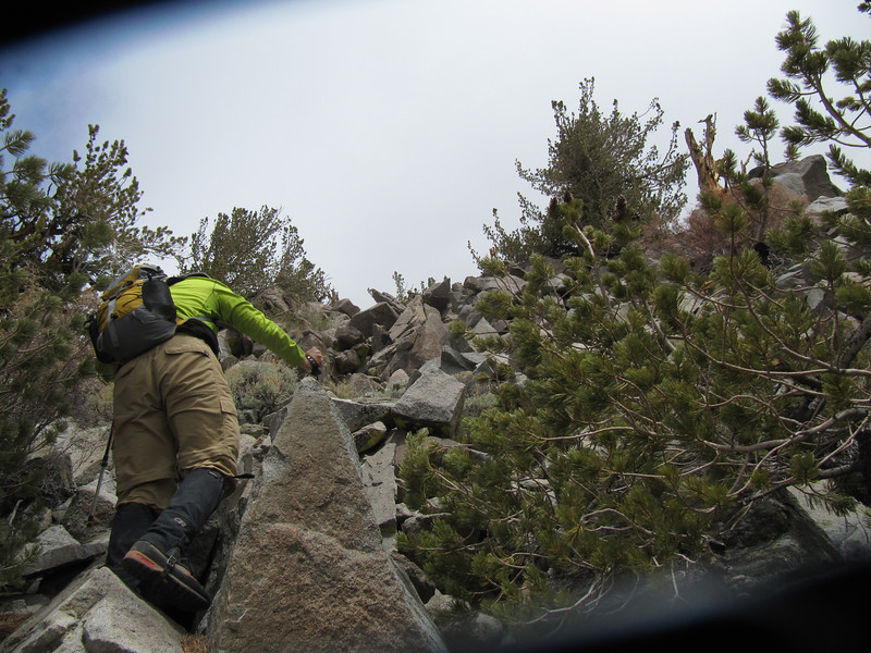 Rafael climbing the SW face of Inyo....easiest approach is to summit via a direct west to east approach