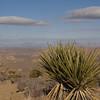 View NW enroute to Ryan Mountain