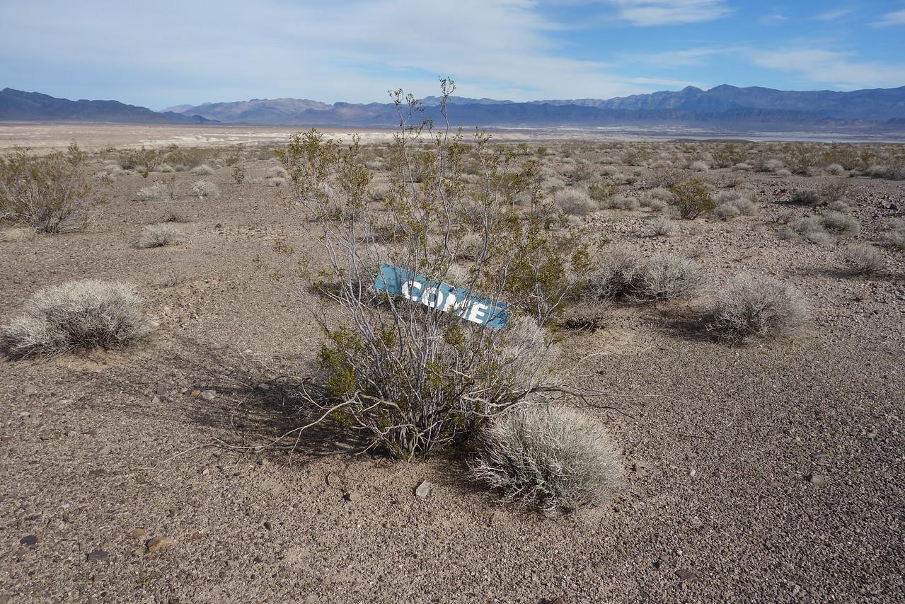 Random desert discovery; not so random placement
