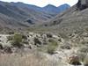 Titanothere Canyon (mi 11.0)