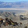 Looking west into Panamint Valley