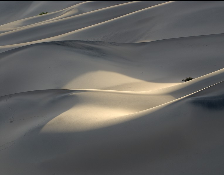 Death Valley Dunes at Dawn #1