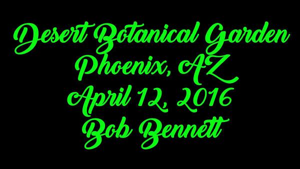 Desert Botanical Garden Movie