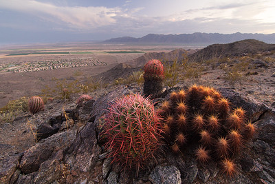 Gila Valley From South Mountain