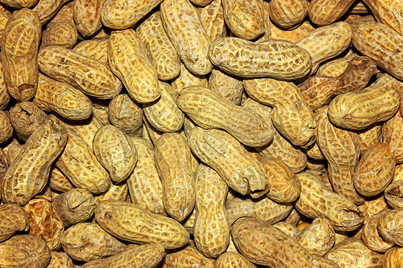 Found A Peanut