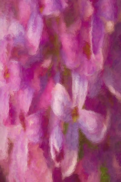 Whispering Pink Spring