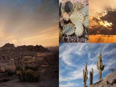 MAT_Desert2-T12XM0oY