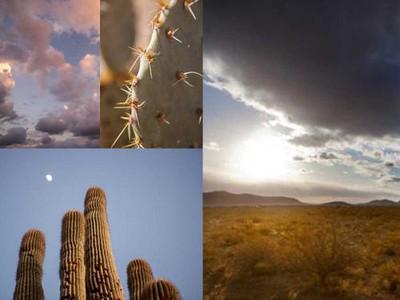 MAT_Desert1-T15W awk_