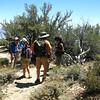 Methusalah Trail