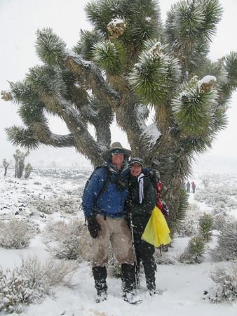 Coso Petroglyphs - snow in the desert - 2-7-2009