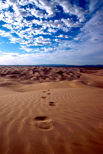 Glamis Footprints - view of footprints over sand dunes