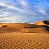 """Desert Gold"" - Algodones Sand Dunes, Imperial County, California"