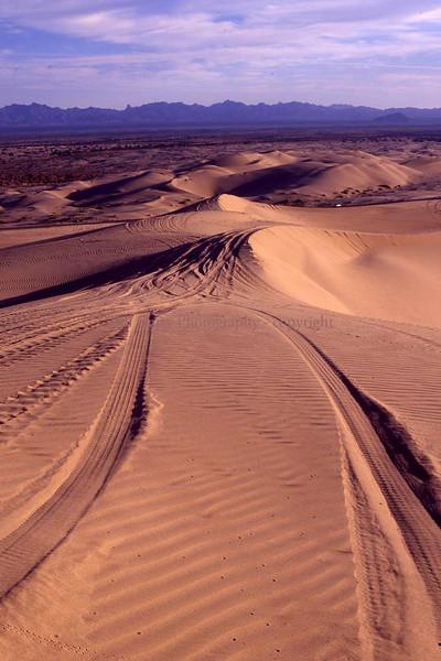 Dune Buggy Tracks