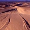 Dune Buggy Tracks - Glamis Sand Dunes