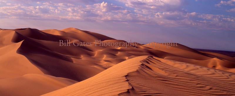 """""""Desert Gold"""""""