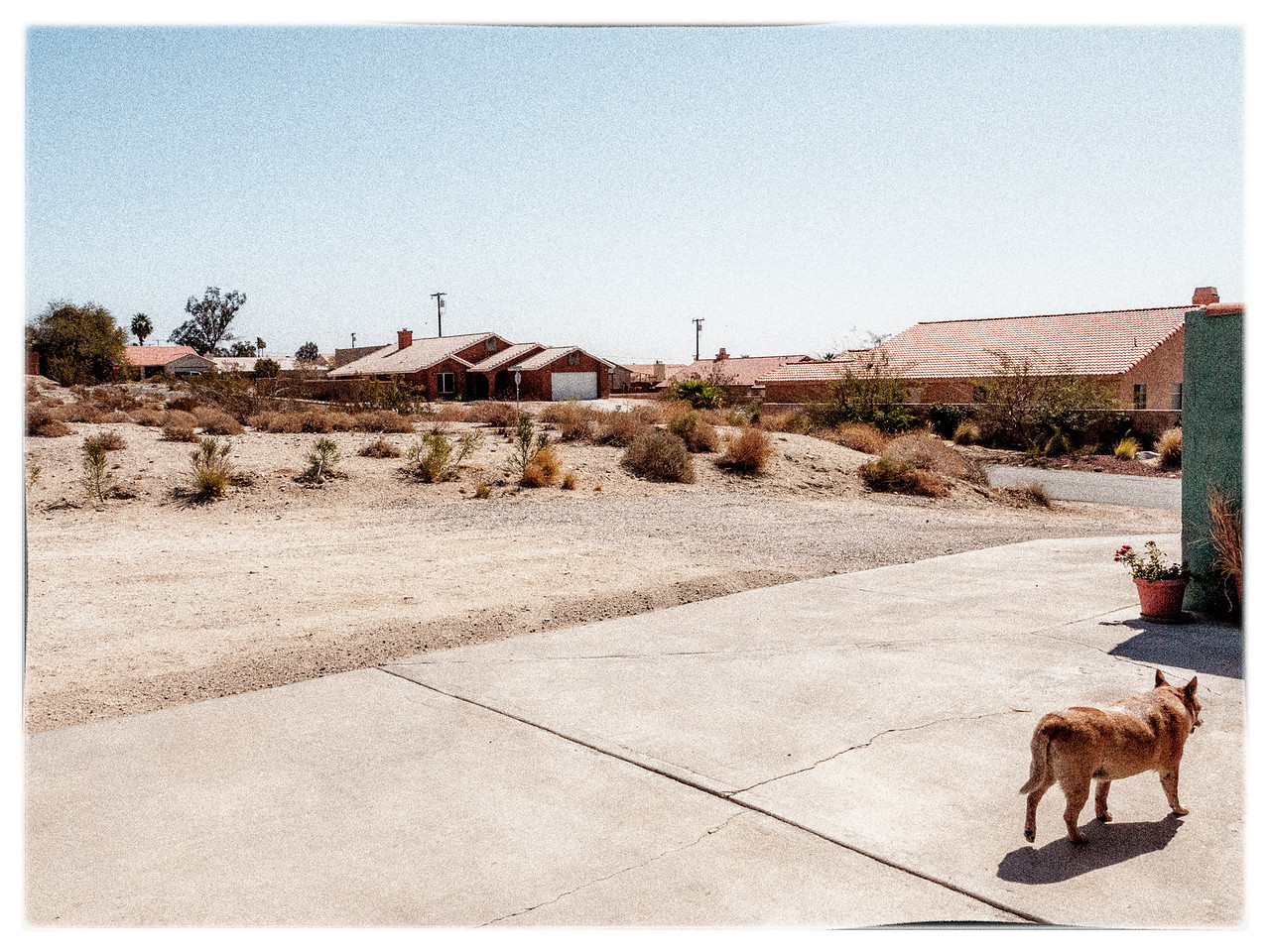 Looking south from the parking area. The dog belongs to Casey. Her name is Scarlett and she is very sweet.