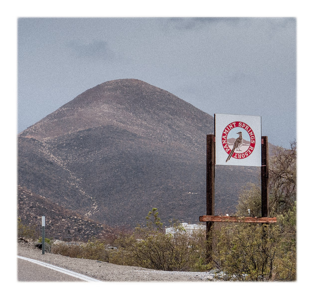We love the sign for Panamint Springs with the picture of our new favourite bird, the roadrunner!