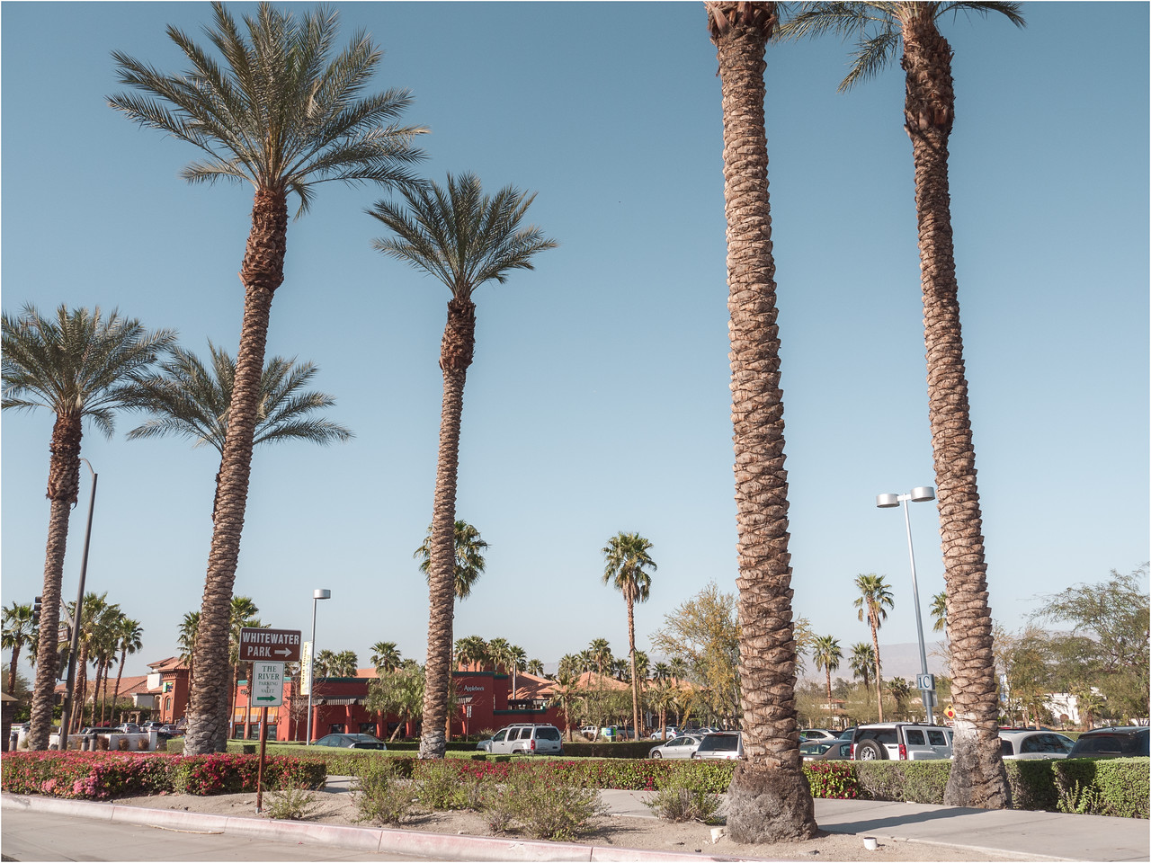 Miles and miles of malls , which look better with Palm trees!