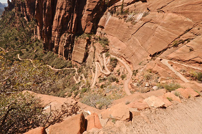 Looking down the trail to Scout's Lookout & Angel's Landing, Zion National Park, Utah