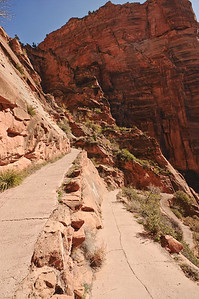 The walk to Scouts Lookout & Angel's Landing, Zion National Park, Utah