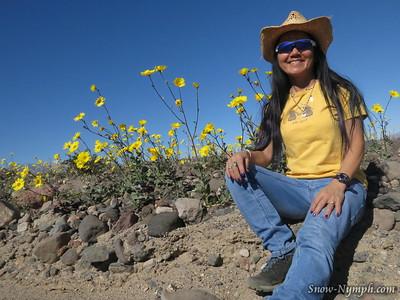 2016-02-06  Death Valley - Warm Springs - Butte Valley - Desert Gold