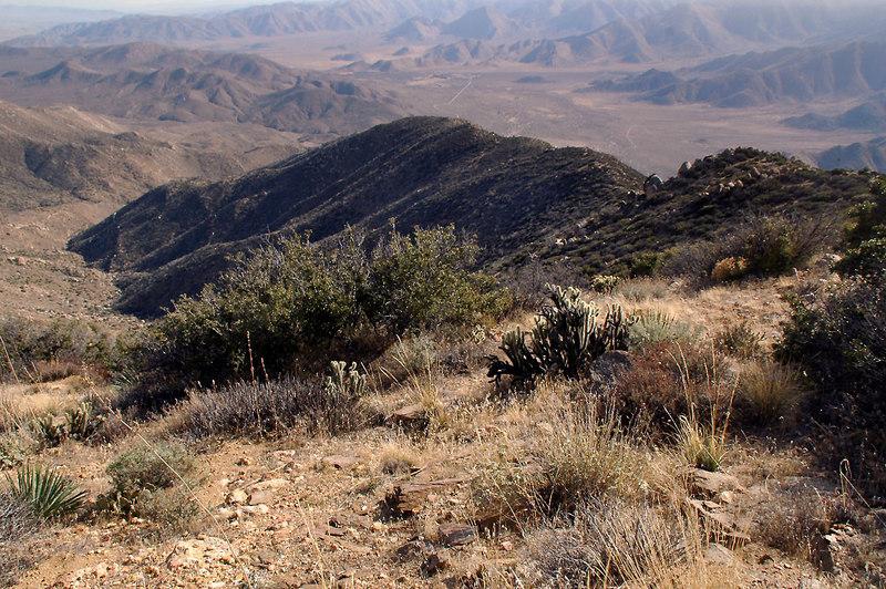 Looking down the ridge we hike up.