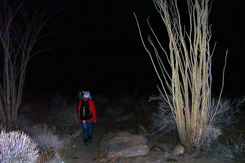 By the time we reached the main canyon it was dark.
