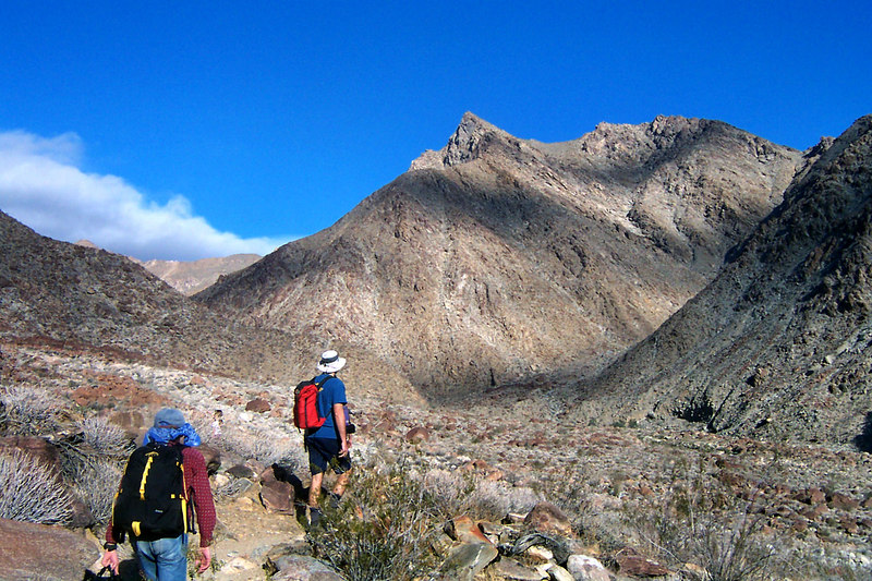 The first part of the hike was up Borrego Palm Canyon. Indianhead Peak in the background.
