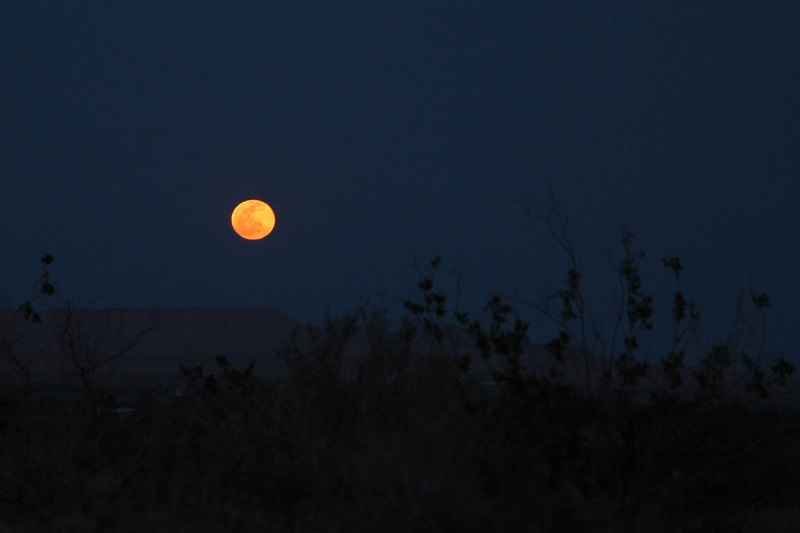 Close up shot of the moon, it had a nice orange color to it.