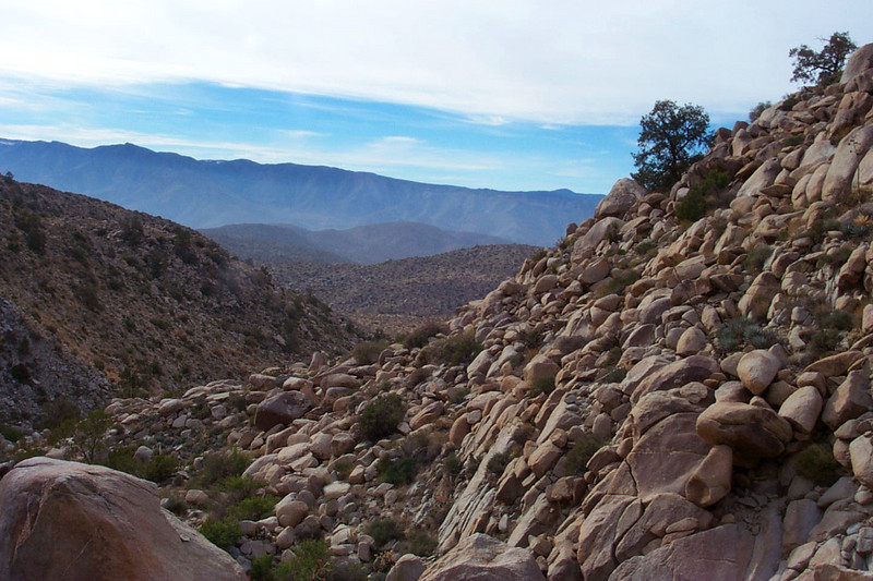 Looking back down the canyon.