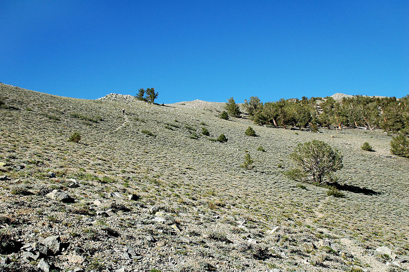 The first part of the hike climbs this north facing slope to about 10,800'. Sooz up ahead. I was moving really slow at the start.
