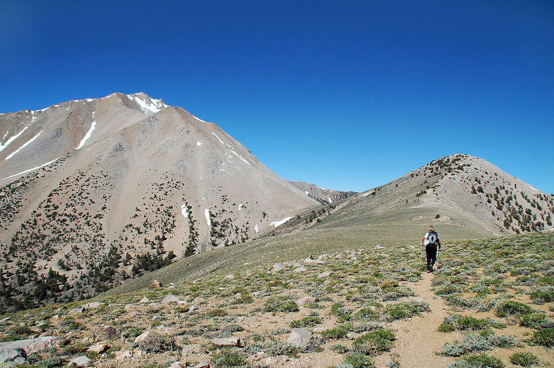 Next, the hike traverses with little ups and downs 1.5 miles to Trail Canyon Saddle.