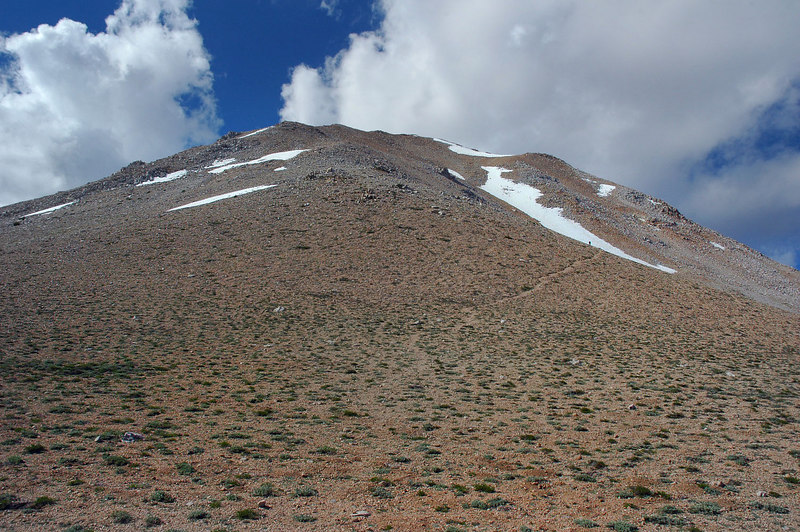 Looking up towards Boundary Peak from the saddle.