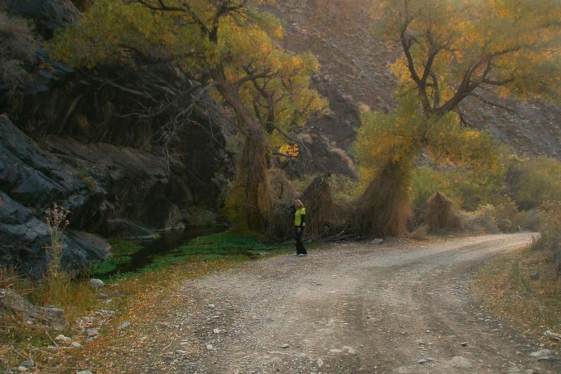 Sooz at a nice spot in Silver Canyon.