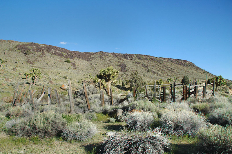 The old corral where I found the petroglyphs last time I was here.