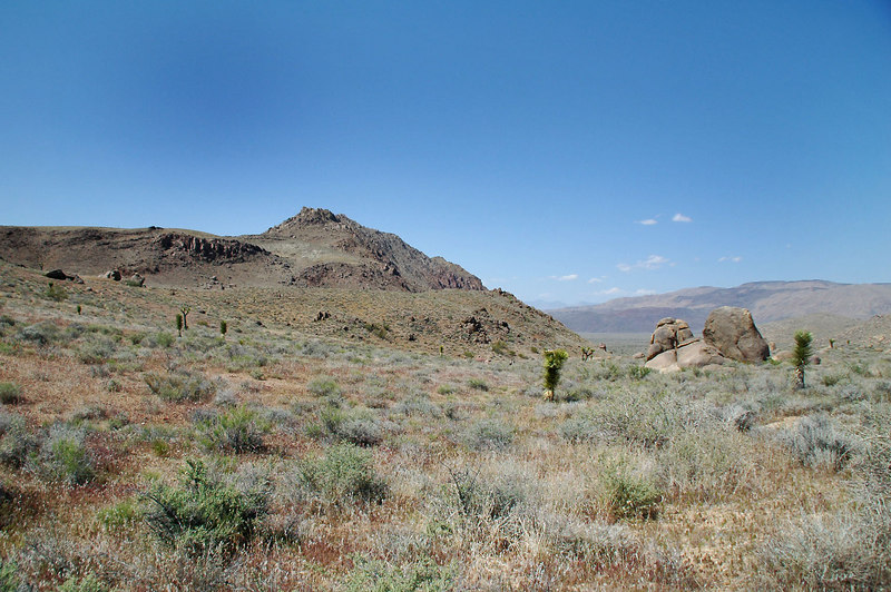 Jurassic Peak