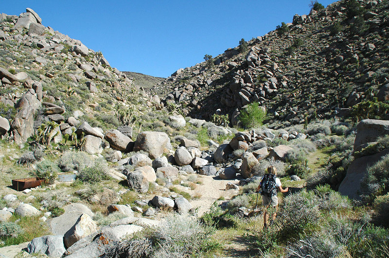 Starting the hike to Upper Centennial Spring to look for petroglyphs. I accidentally found some petroglyphs in this canyon last month while looking for the F-4's crash site that is near by.