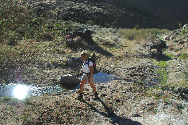 After about 2 miles, we reached water near the spring.