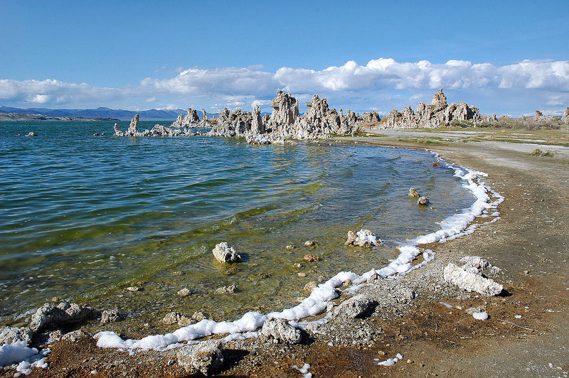 At South Tufa, there was a foam along the shore line.