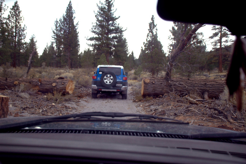 On one of the dirt roads on the east side of the craters.
